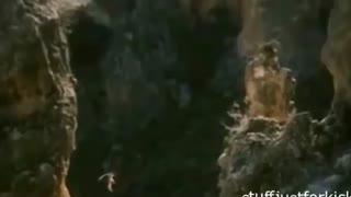 مجموعه حملات،حیوان مغرور-عقاب