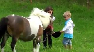 یونی شتلند به دلیل کوچکی اندازه اش به عنوان اسب بچه ای برای کودکان بسیار محبوبیت دارد