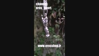 گردنبند بدنسازی و ورزشی - www.erosshop.ir
