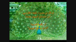 قصة الحقیقیة حول الإمام المهدی(عج) و مسجدجمکران المقدس(عربی)