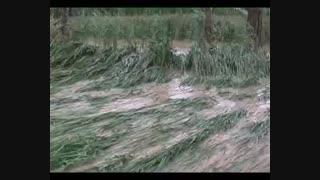 سیل در شهرستان بستان آباد