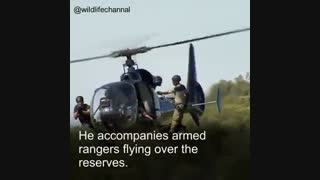 هلیکوپتر  به جاهای صعب العبور با یک سگ رفته و  بعد از...سگ به شکارچی غیر مجاز حمله ور می شود