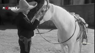 سکانس مرگ زاپاتا در فیلم زندهباد زاپاتا!(Viva Zapata,1952)