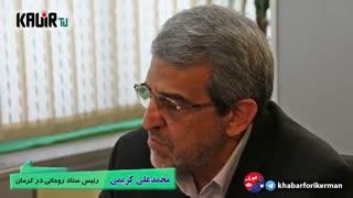 گزارش/ نشست خبری کریمی رئیس ستاد روحانی در کرمان