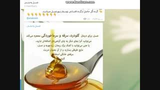 کانال تلگرام سلامتی و طب سنتی