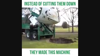 جا به جایی درخت به جای قطع ان