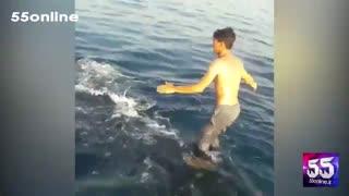 بدرفتاری دو صیاد با یک کوسهنهنگ در بندر بوشهر