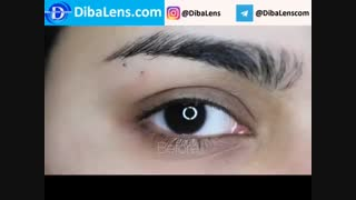 لنز رنگی لومینوس  گری| DibaLens.com- Luminous Gray