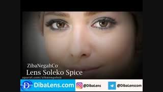 لنز رنگی سولکو  فصلی  اسپایس|DibaLens.com-SOLEKO Twin Spice