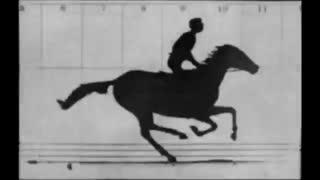 Sallie Gardner at a Gallop  1878