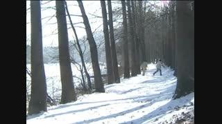 قسمت 4 سریال کره ای «زمستان سوناتا » Winter Sonata با زیرنویس فارسی چسبیده ( Part  2 )