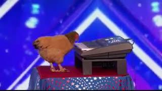مرغ پیانیست در برنامه استعداد یابی آمریکا