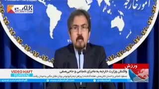 واکنش وزارت خارجه به ماجرای شجاعی و حاجیصفی