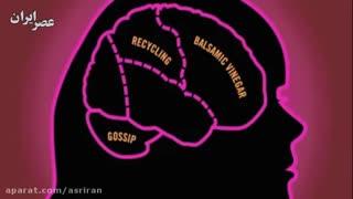 مغز عزیزمون
