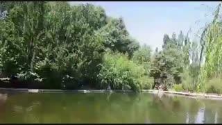 تور داخلی تنگه مروارید   تور داخلی استان فارس   تور شیراز گردی