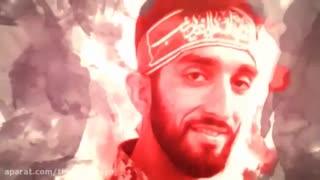 به یاد محسن حججی....تو که از این کویر وحشت به سلامتی گذشتی...سلام ما را هم برسان