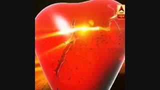 پرومو LOVE AUR DHOKHA ( عشق و فریب )