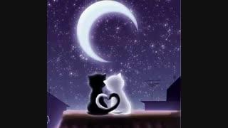 آهنگ آرامش بخش و لالایی . شب بخیر کوچولوها