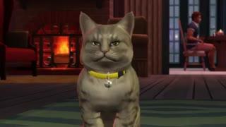 سگ ها و گربه ها در Sims 4