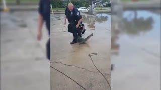 درگیری تمساح با دو پلیس آمریکایی