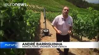 روباتی برای افزایش توان رقابت پذیری شراب سازان در اروپا - futuris