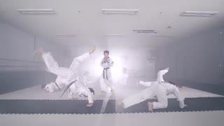 blood sweat and tears-Taekwondo version