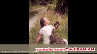 حمله 20 هزار زنبور عسل به شکم یک زن حامله + عکس
