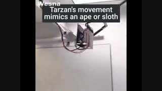تماشا کنید : ربات تارزان
