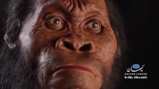 دهانبزرگ، جدّ بشر در 540میلیون سال قبل