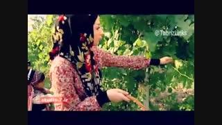 مراسم سنتی انگور و شانادر و برگ مو آذربایجان در اورمیه