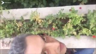 حیاط خونه به سبک ارژنگ امیرفضلی