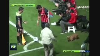 سگ فوتبالیست