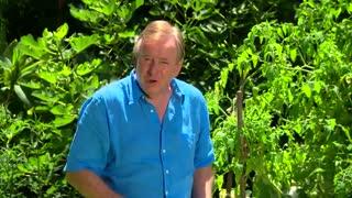 چگونه باغچه خود را محیای پاییز کنیم - HD