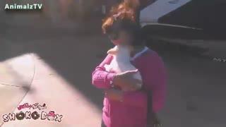واکنش کودکان نسبت به هدیه ای از جنس سگ !!!