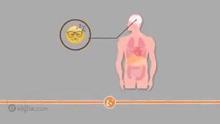 بعد از خوردن یک لیوان نوشابه در بدن چه اتفاقی میافتد؟